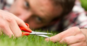 Obsessive man laying on grass, trying to cut his grass perfectly
